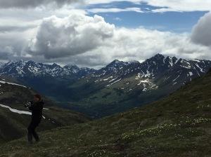 Alaska, Katanerd